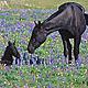 Utah governor making scapegoats of wild horses – advocates