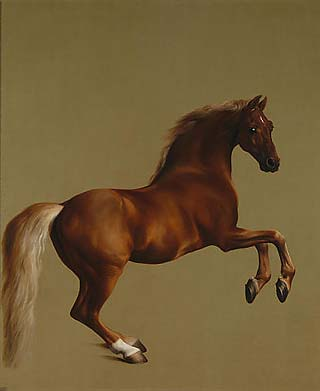 Whistlejacket is an oil-on-canvas painting from about 1762 by British artist George Stubbs showing the Marquess of Rockingham's racehorse, rearing up against a blank background. The huge canvas, lack of other features, and Stubbs' attention to the minute details of the horse's appearance give the portrait a powerful physical presence.	| Wikimedia Commons / Public Domain