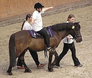 Therapeutic horseback riding horse show, Císařský ostrov, Prague, Czech Republic | ©user:karakal / Wikimedia / CC BY-SA 3.0