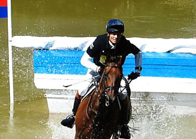 horse-trials-379467_958x339