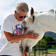 Vietnam veteran Dan Riley of Meiners Oaks holds a horse named Chrome in an Ojai orange field. Riley is taking part in a therapy session with H.O.P.E for Warriors, which stands for Human Opportunity Partnering with Equines. The organization provides equine therapy for those suffering with post-traumatic stress disorder. Photo credit: Maya Sugarman/KPCC