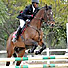 Show jumping not just a white sport